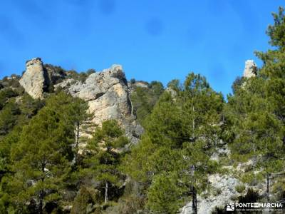 Rambla del Avellano-Arbeteta; senderismo en cazorla bosque encantado asturias parque nacional monfra